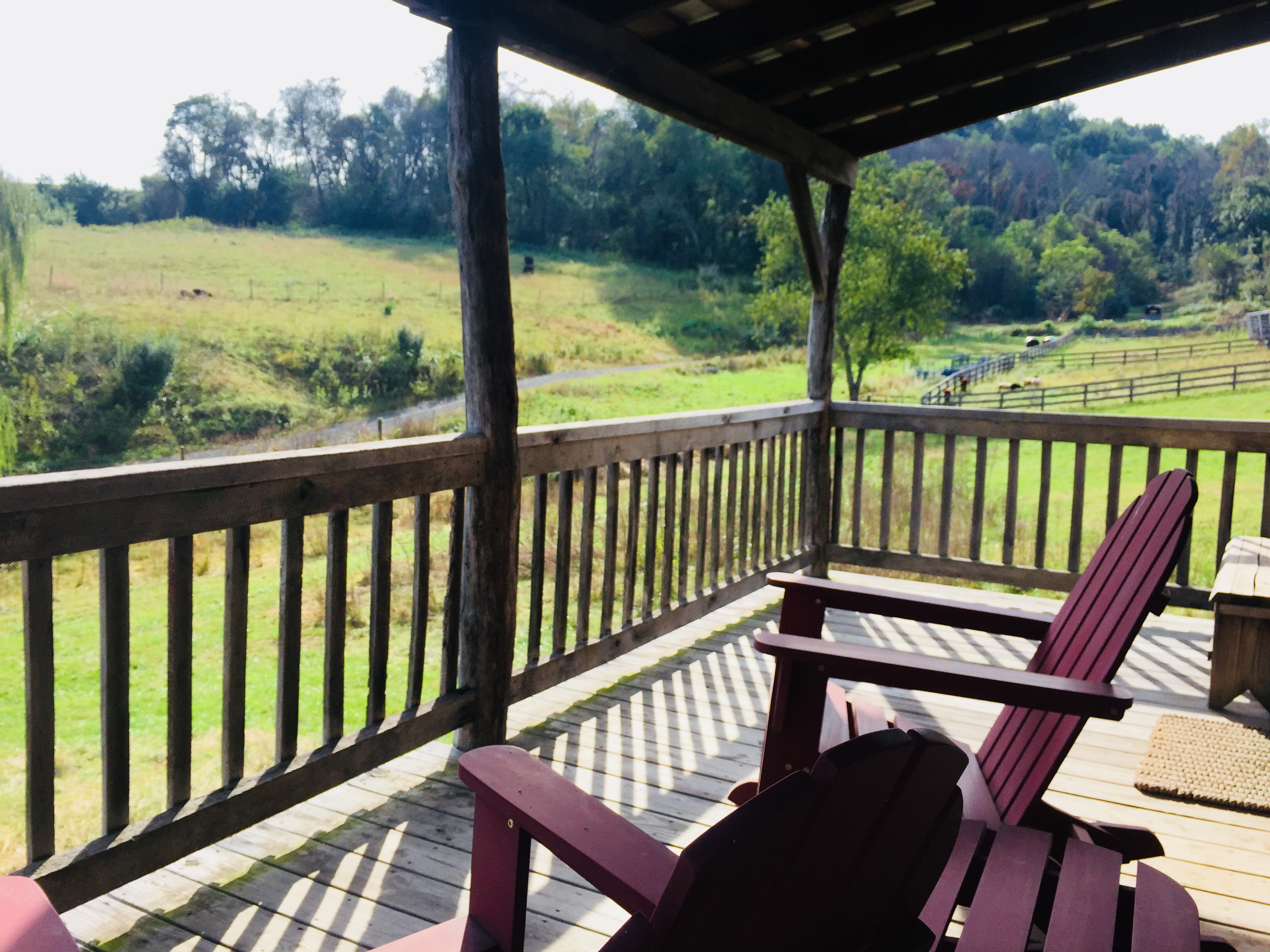 Redbud Cabin Porch View