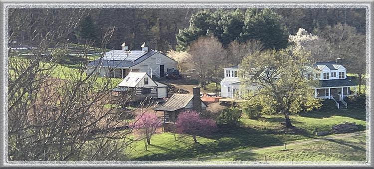 Hidden Creek Farm CSA farm shares in Virginia, Maryland, DC